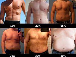 減量の目標はBMIより体脂肪率。男は15%、女は25%を