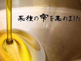 油にこだわると「まごどさ」なる岩手産の菜種油が気に入る