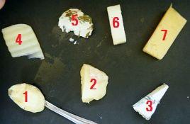 チーズを楽しむためにワインの勉強なんぞも始めてみたよ