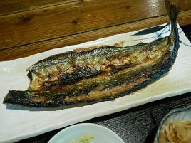 昭和が香る人気居酒屋でさんま開き塩焼き&玉子かけご飯